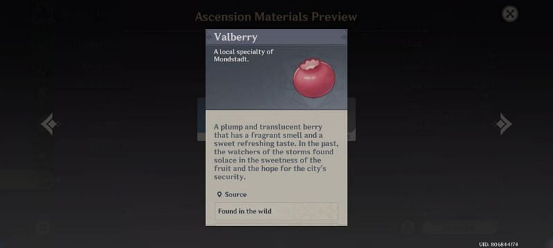 Valberry in Genshin Impact