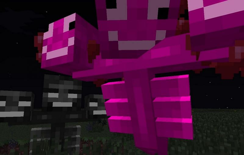 Shown: The derpy Pink Wither, added as a April Fools joke (Image via minecraft.fandom)