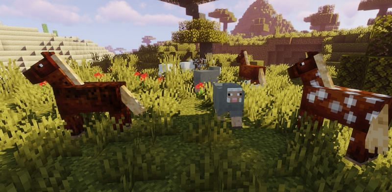 Shown: A herd of brown Horses (Image via Minecraft)