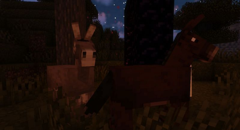 Shown: The difference between a Mule (right) and Donkey (left) (Image via Minecraft)