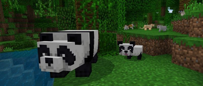 When pandas are killed in Minecraft, they drop 1-2 pieces of bamboo on the ground (Image via Minecraft)