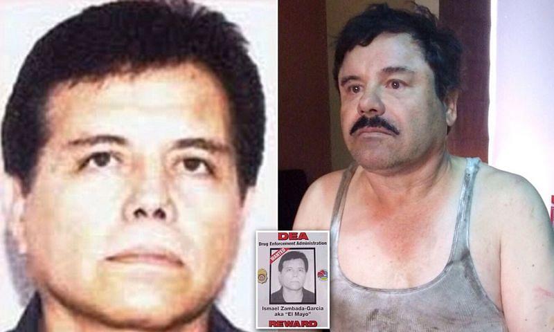 "Ismael ""El Mayo"" Zambada (Image via Daily Mail)"