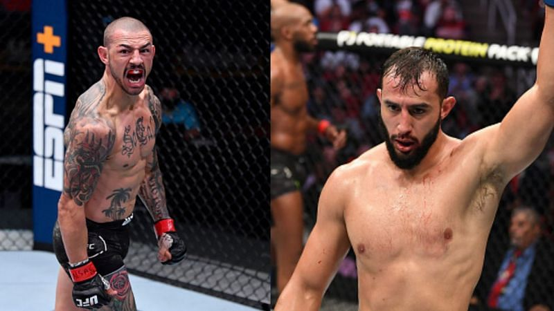 Cub Swanson (left), Dominick Reyes (right)