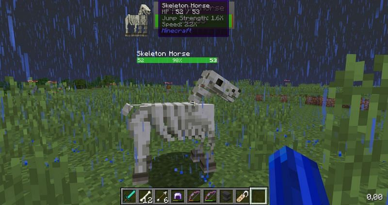 Skeleton horses in Minecraft do not eat anything (Image via bugs.mojang)