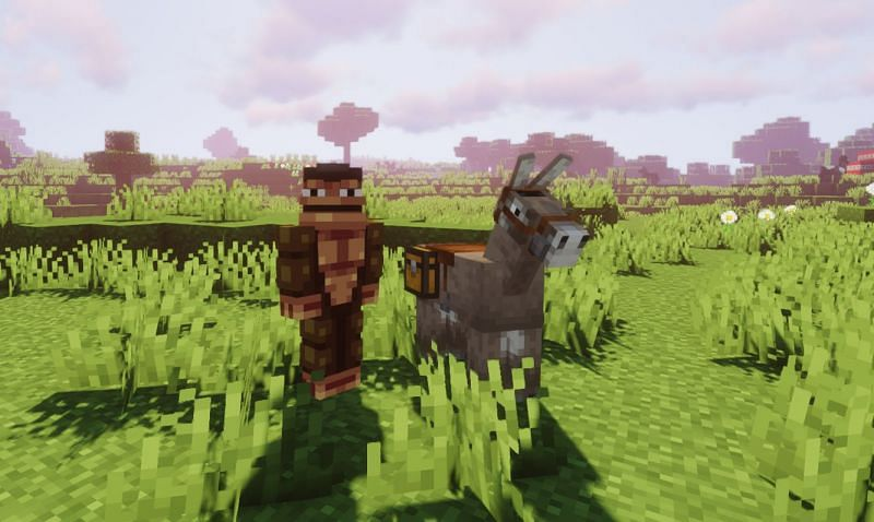 Donkeys are tamed based on their temper stat (Image via Minecraft)