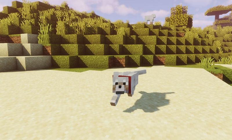Wolf pups can be healed using fish in Minecraft (Image via Minecraft)