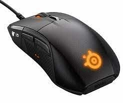 Mouse: SteelSeries Rival 700