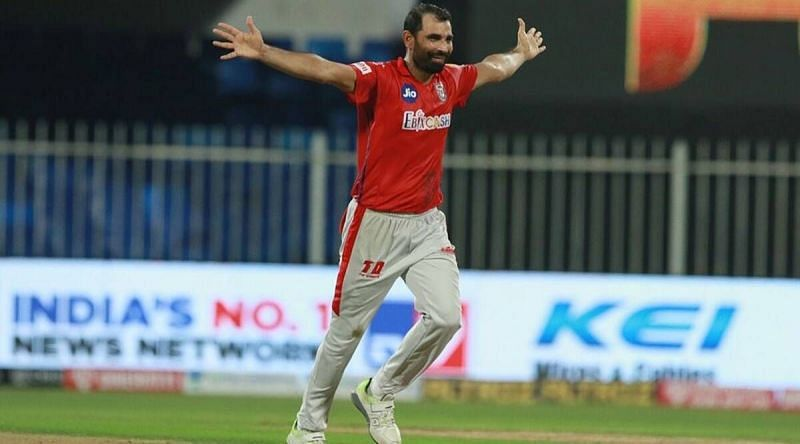 Shami celebrating a wicket in the IPL (Image Credit: Twitter)