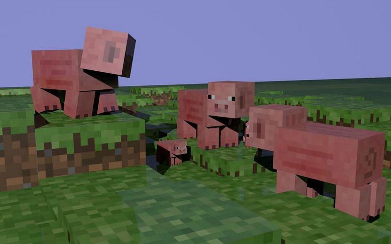 Three pigs having a conversation?! (Image via Minecraft)