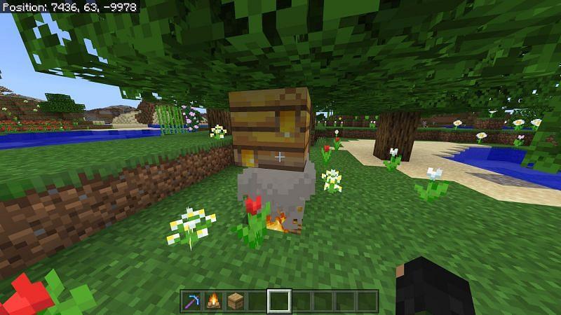 Steps to get honey in Minecraft