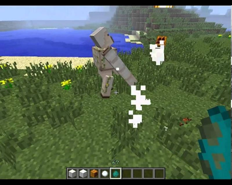 Iron golem vs snow golem in Minecraft (Image via YouTube)