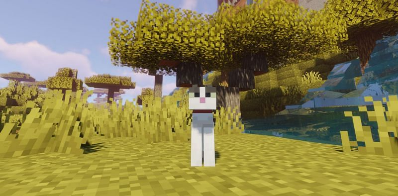 Fish can be used to speed up growth times for kittens in Minecraft (Image via Minecraft)