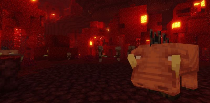 Shown: A Hoglin spotted in a heavily populated Crimson Forest (Image via Minecraft)