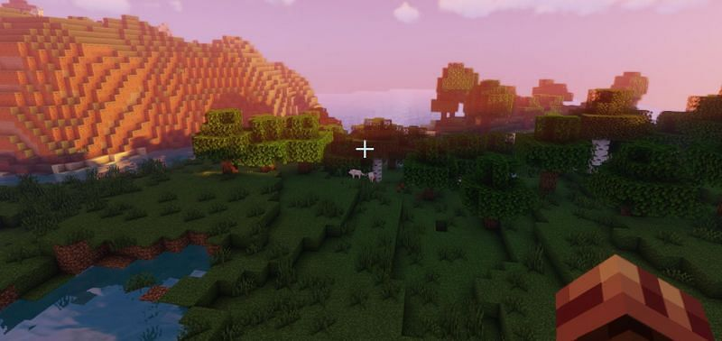 The spawn of seed 9026, where wolves can be seen in the distance (Image via Minecraft)