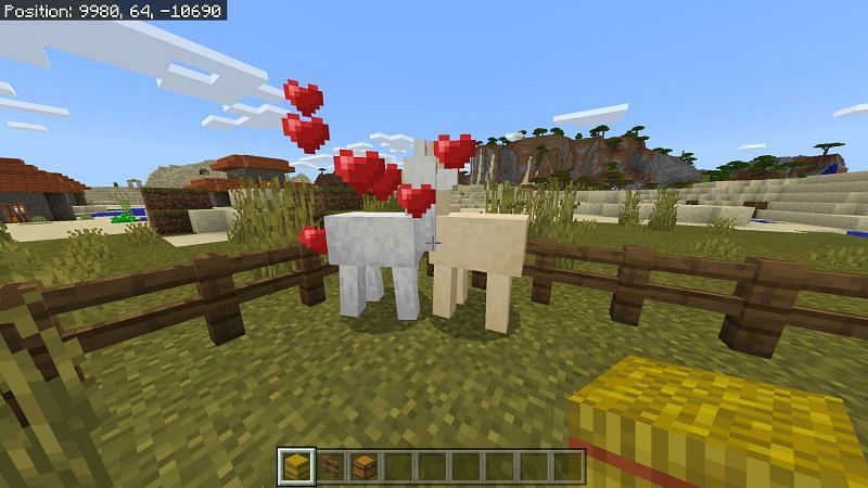 How to Breed Llamas in Minecraft- Step 4