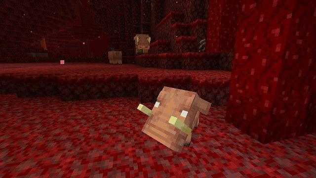 Baby Minecraft Hoglin (Image via gamerevolution.com)