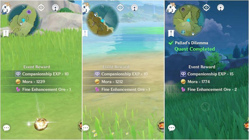 Companionship EXP reward comparison
