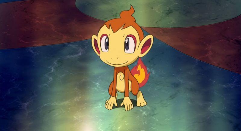 Chimchar in the anime (Image via The Pokemon Company)
