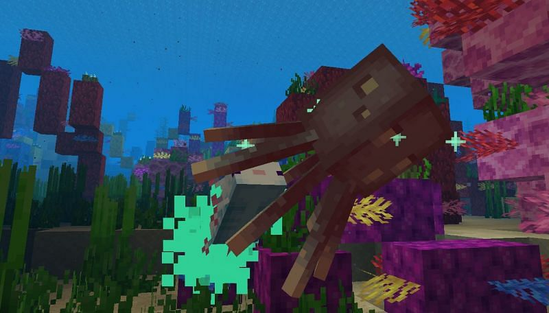 An angry Axolotl being aggressive towards an annoyed Squid (Image via Minecraft)