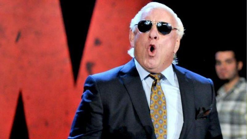 Ric Flair took several digs at Bret Hart