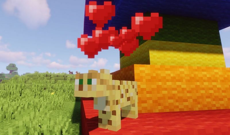 The signal that an Ocelot finally trusts the player (Image via Minecraft)