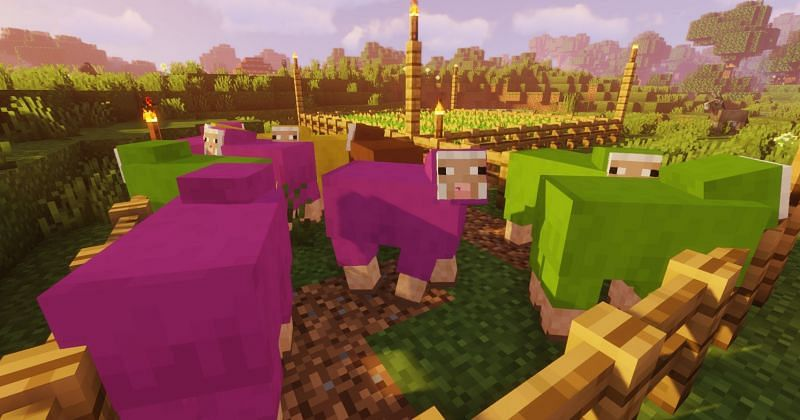 Shown: A bunch of very colorful sheep (Image via Minecraft)