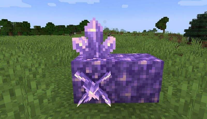 Shown: A Budding Amethyst that has sprouted some Amethyst Clusters (Image via Minecraft)
