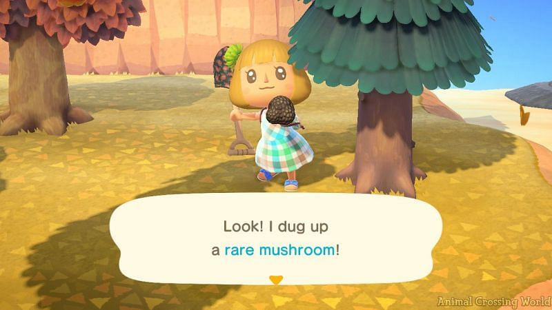 Mushrooms and maple leaves will spawn (Image via Animal Crossing world)