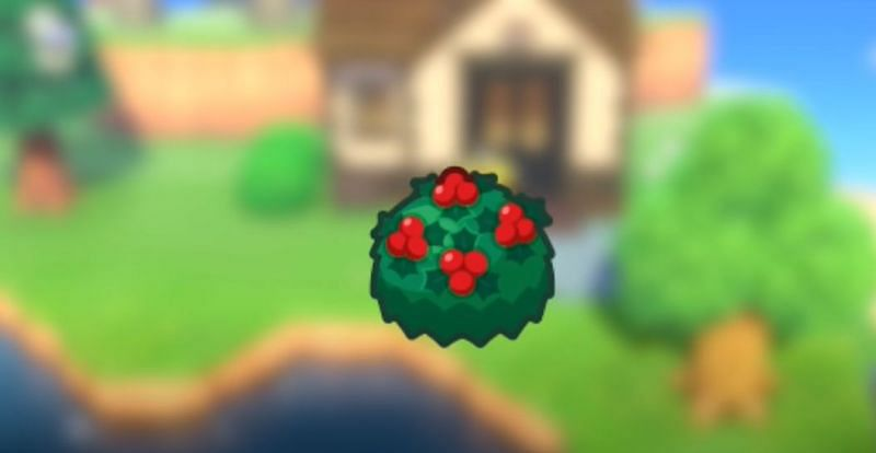 Holly Bushes will be visible in the Southern Hemisphere (Image via Animal Crossing world)