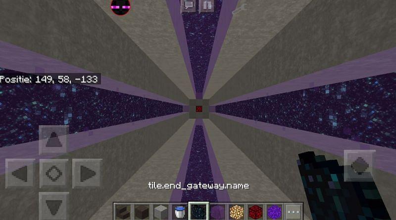 The unobtainable End Portal being used as decoration (Image via u/RickyThunderfox on Reddit)