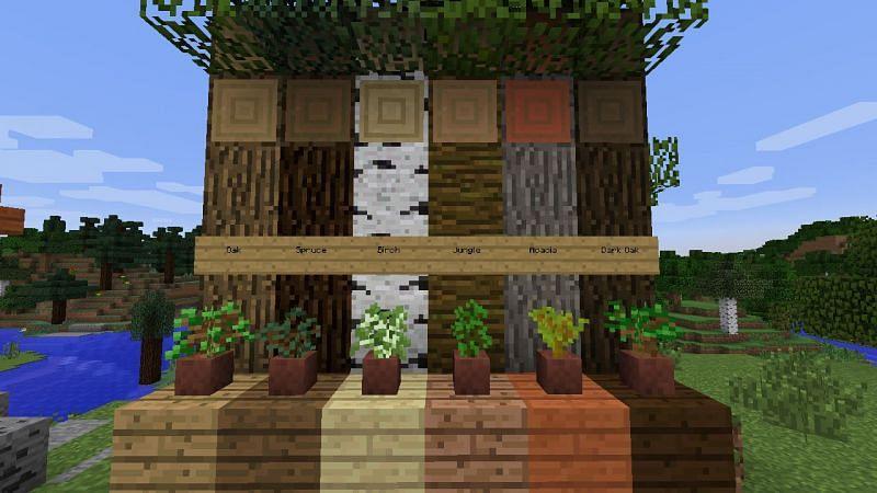 Different wood variants (Image via Reddit)