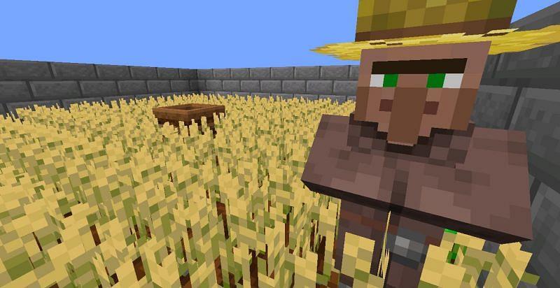 A farmer (Image via Minecraft)