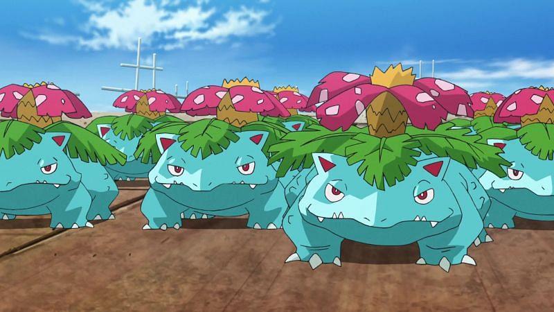 A forest of Venusaurs (Image via The Pokemon Company)