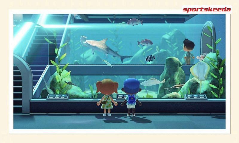Nintendo announces its plans for Animal Crossing: New Horizons (Image via Sportskeeda)
