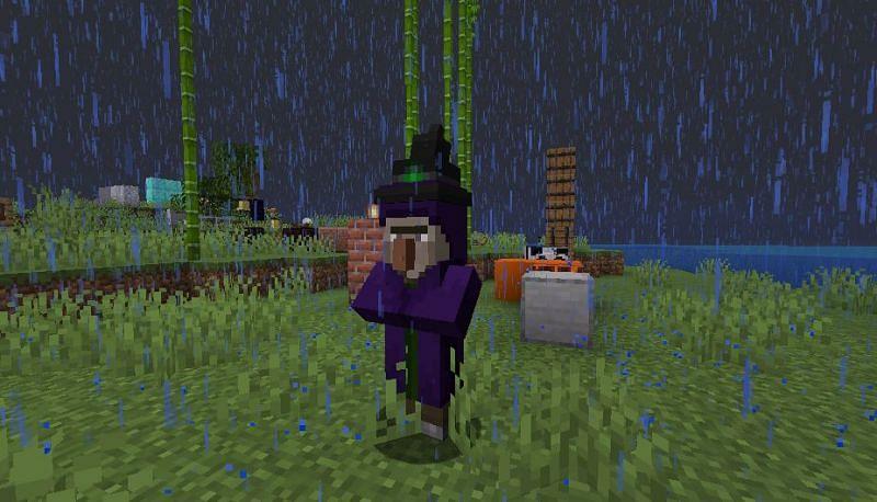 Witch in Minecraft (Image via Reddit)