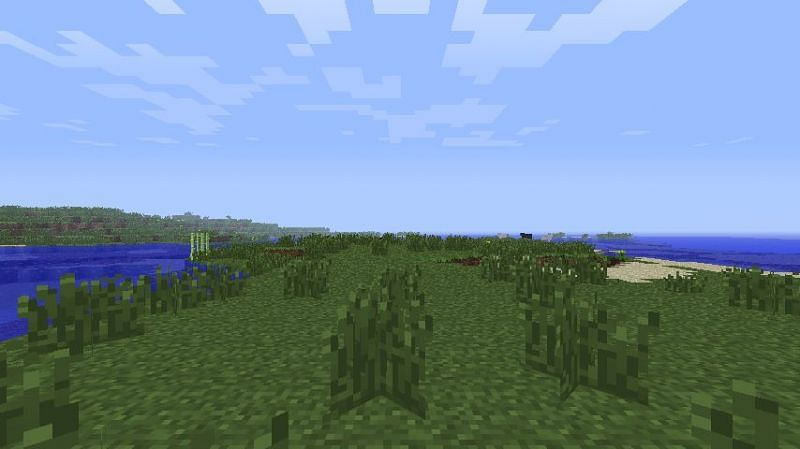 Players can find a wooded mountain biome in this seed (Image via Minecraft Forum)