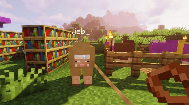 Shown: The jeb_ sheep thinking about eating some grass... (Image via Minecraft)