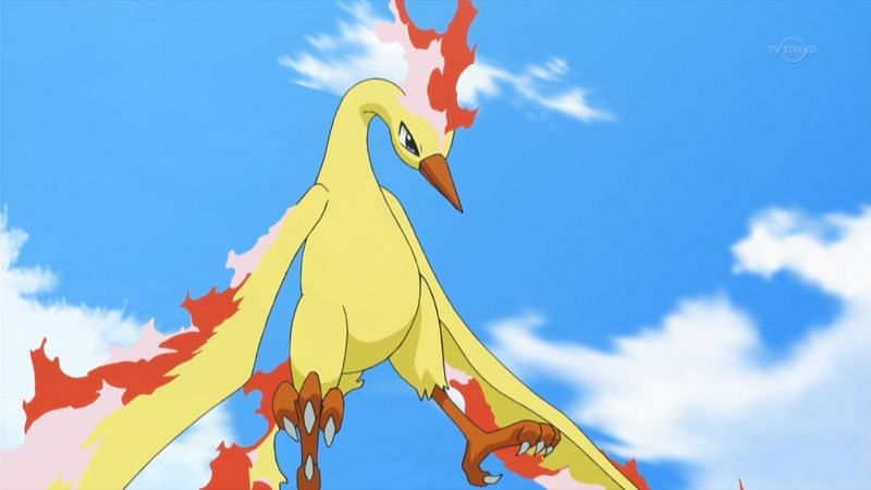 Moltres in the anime (Image via The Pokemon Company)