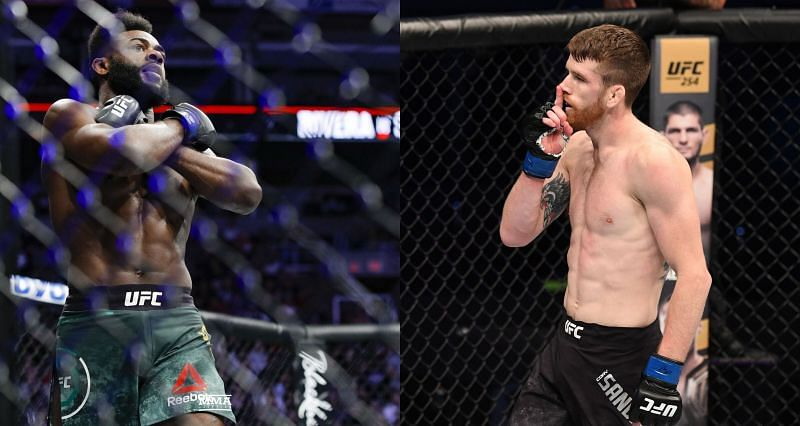 Cory Sandhagen thinks Aljamain Sterling can't return to competitors inside six months of neck surgical procedure, desires concrete guidelines in place