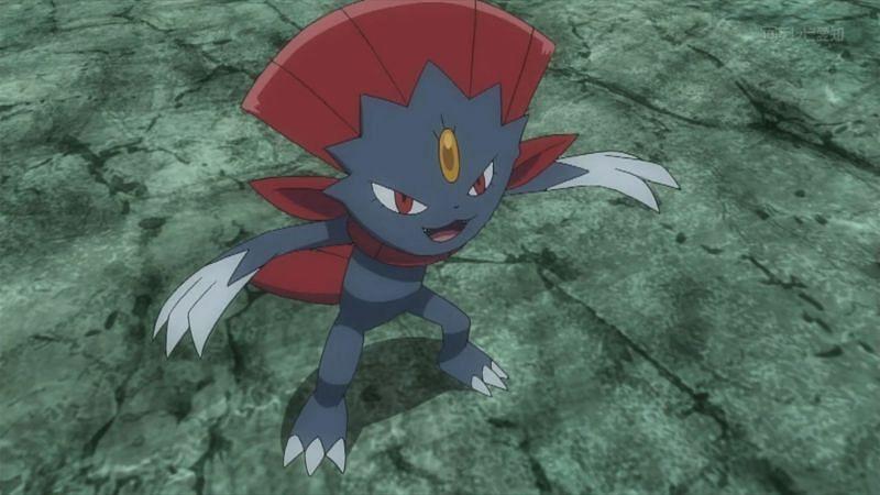 Weavile in the anime (Image via The Pokemon Company)