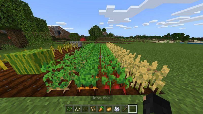 Crafting Crop Farms in Minecraft