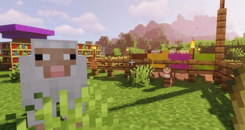 Shown: Jeb and the bois fiending for some wheat (Image via Minecraft)