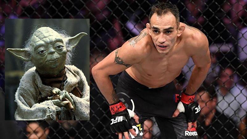 Yoda and UFC