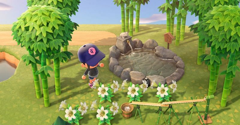 The Young Spring Bamboo will still spawn for another month (Image via Animal Crossing world)