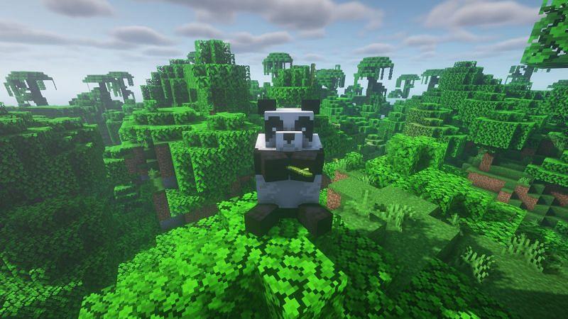 Un lindo panda comiendo bambú (Imagen a través de Minecraft)