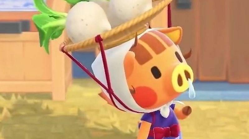 Daisy Mae in Animal Crossing: New Horizons (Image via Eurogamer)
