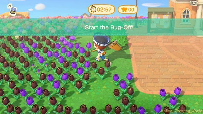 Players get 3 minutes to catch as many bugs as they can (Image via Animal Crossing channel)