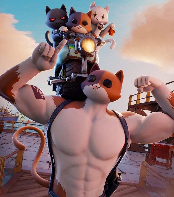 Meowscles and his family. Image via Pinterest