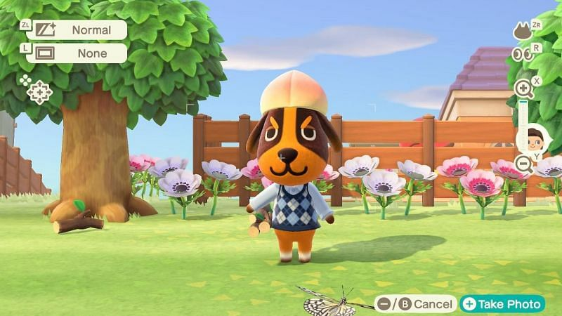 Butch in Animal Crossing: New Horizons (Image via Reddit)
