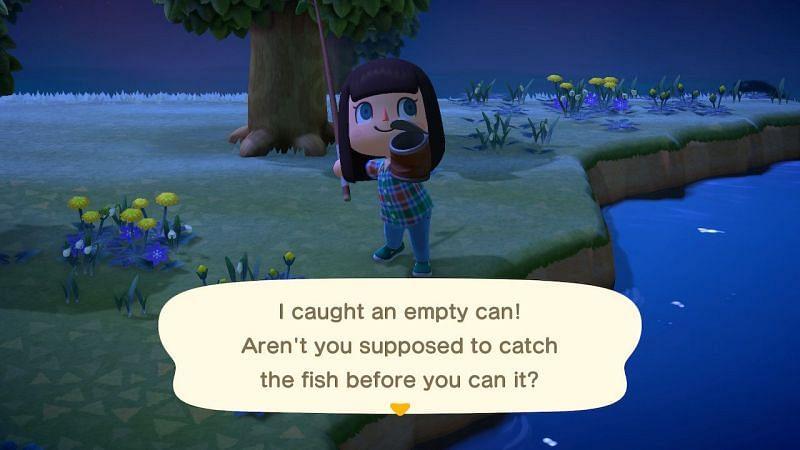 Catching trash in Animal Crossing. Image via Animal Crossing Wiki